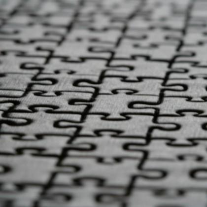 Puzzle (photo @INTVGene)