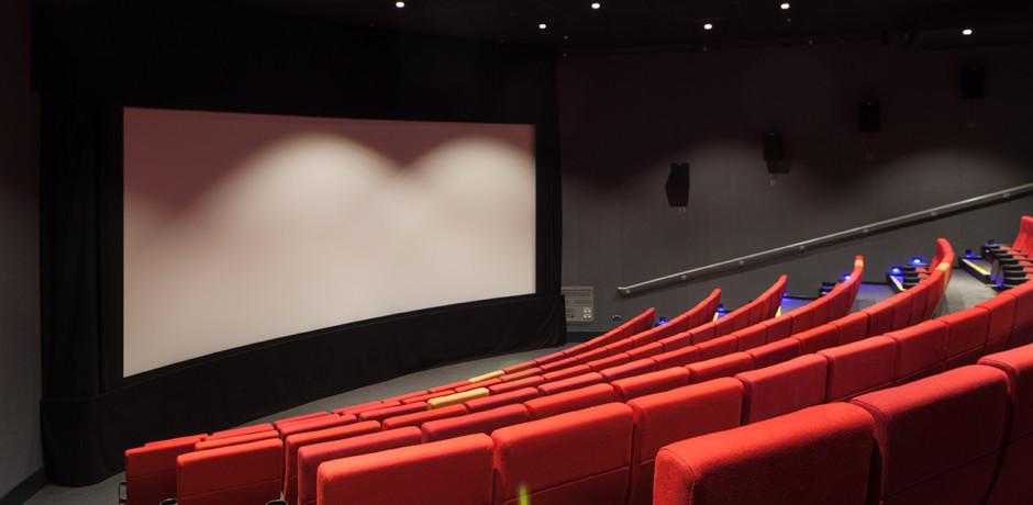 Cinema 2. Photo credit Paul Karalius